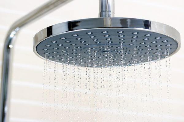shower head business